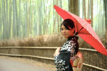 18058 - JAPON FASCINANTE